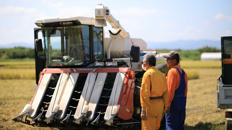 中道農園の稲刈り