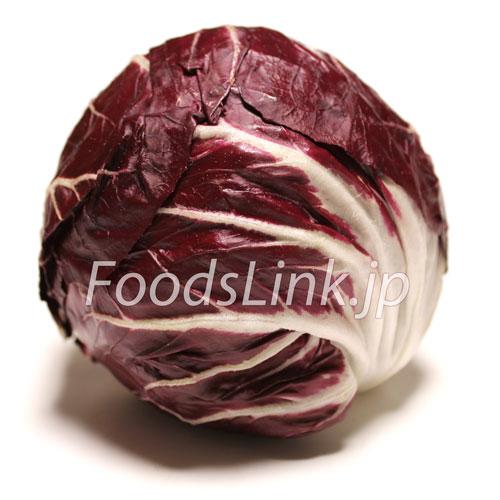 トレビス:旬の野菜百科