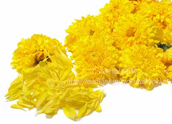 の 花 食用 菊