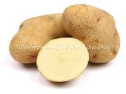 はるか,ハルカ,ジャガイモ,じゃがいも,ポテト,馬鈴薯