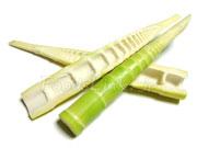 真竹のタケノコ